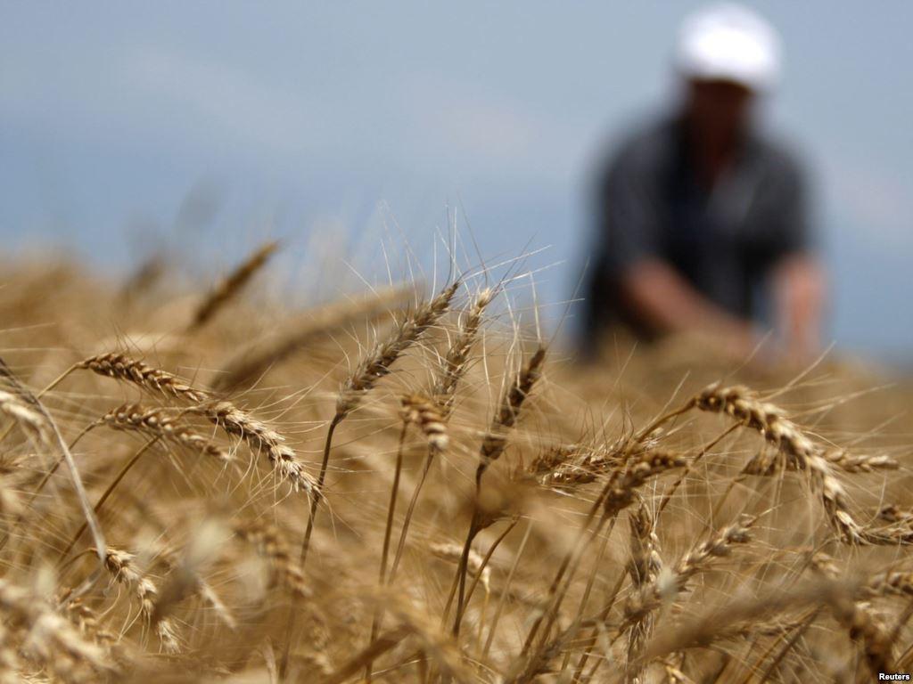 Скільки фермерів господарює на Тернопіллі