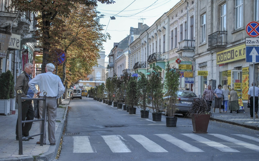 Озеленили частину вулиці Чорновола