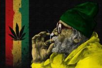 starik_i_marihuana_1680x1050