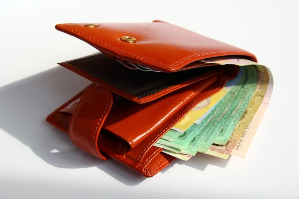 Підвищення мінімальної зарплати не впливає на ставки єдиного податку