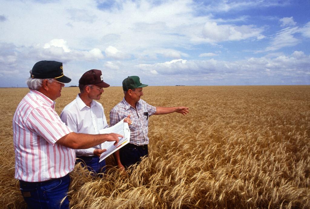 Аграрії України перекривають головні автошляхи на знак протесту