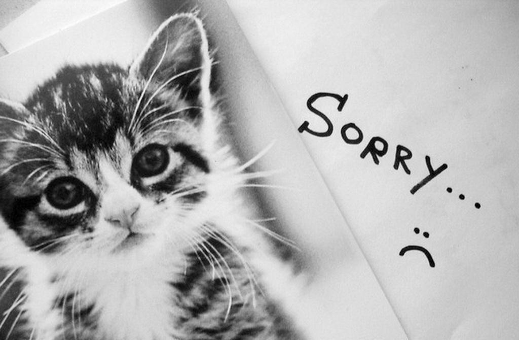 Просити вибачення не так легко?