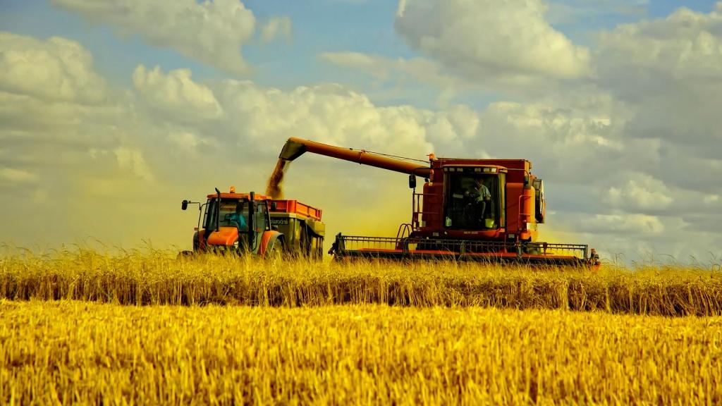 Український експорт: зерно й олія замість металу