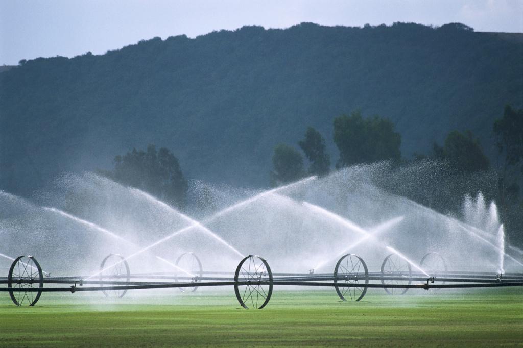 Ефективне керівництво — запорука успіху водогосподарської галузі краю