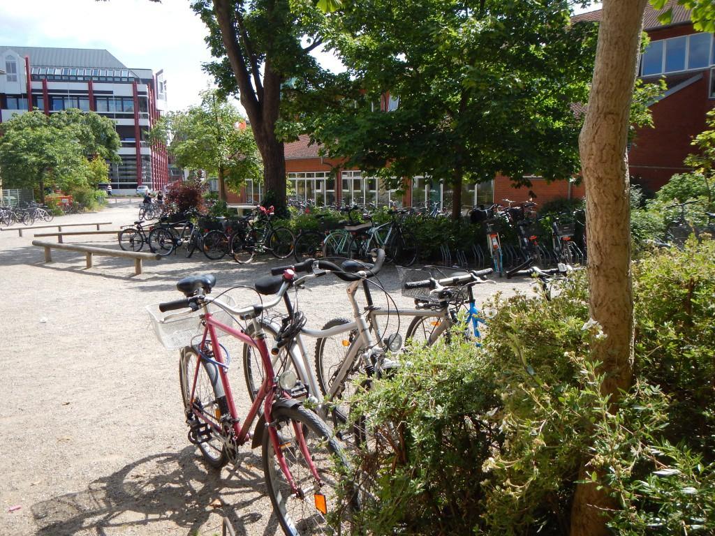 Велосипедна парковка у дворі  гімназії міста Ойтін