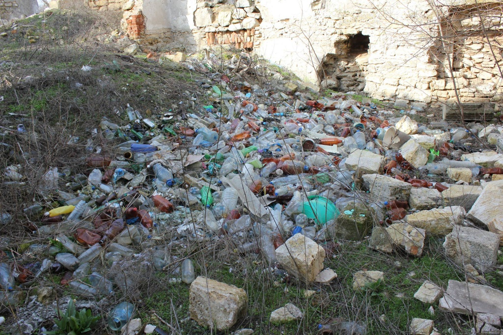 Мишача метушня в країні-сміттєзвалищі