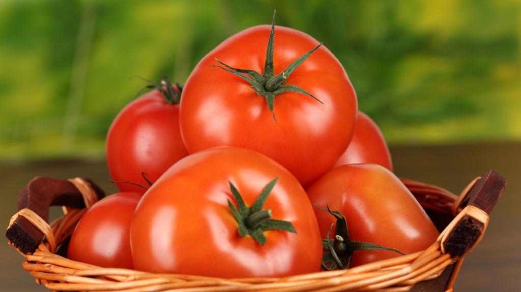 Дивовижну здібність знайдено у помідорів