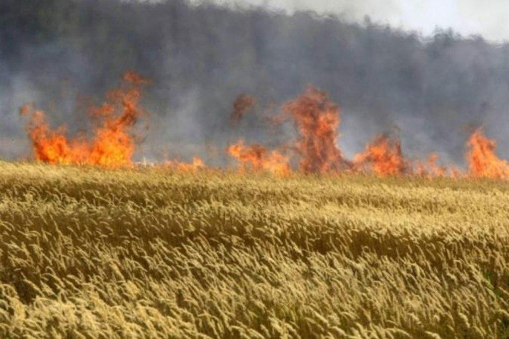 Пожежна безпека в агропромисловому комплексі