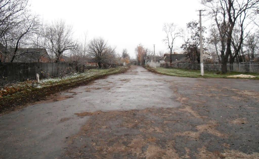 Біжить через століття моя вулиця