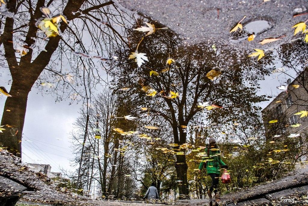 Тернопіль у калюжі (листопадове)