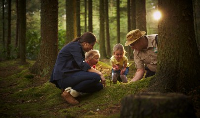 Family-Photo-Forest-1