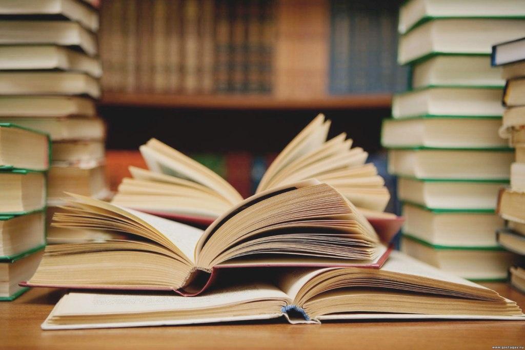 Світлана Козелко: «Ми ламаємо стереотипи про стандартну книгозбірню»