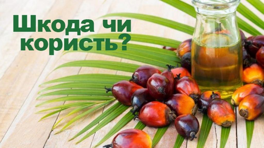 Небезпечна лише для українців? Що потрібно знати про пальмову олію