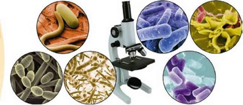 На Тернопіллі зафіксували 60 випадків інфекційних захворювань