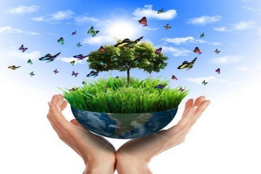 Зміни в екологічному податку