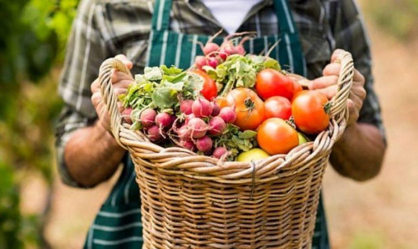 Який податковий період обрати виробникам сільськогосподарської продукції?