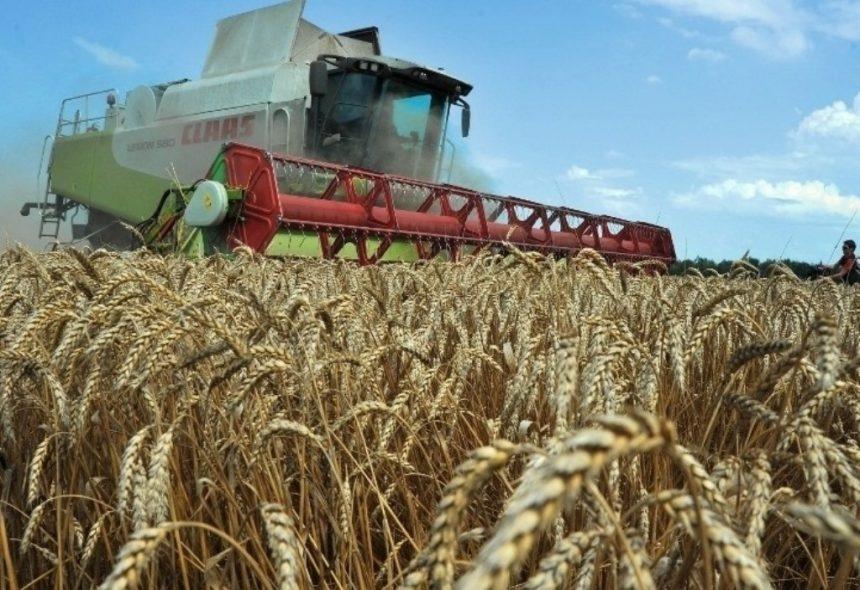 Операція «Урожай—2019»: перевірки намарно не минули