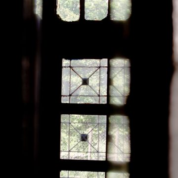 Такі особливі теребовлянські двері