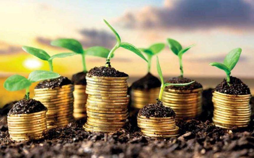 Звітність і сплата земельного податку