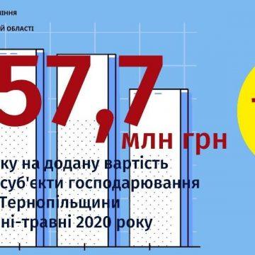 ПДВ до бюджету від платників Тернопільщини