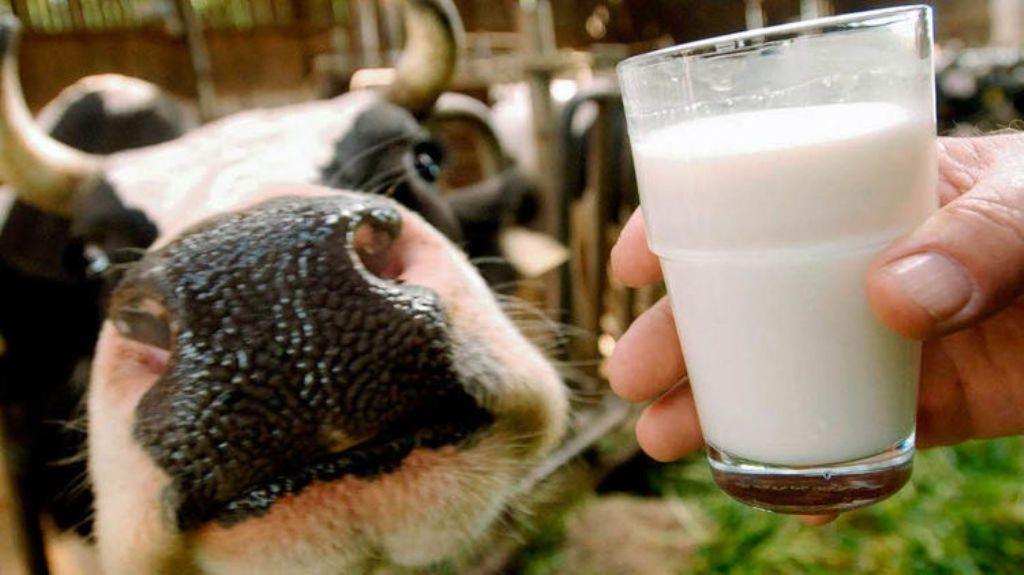 Молочний краник у сільському дворі не перекриють