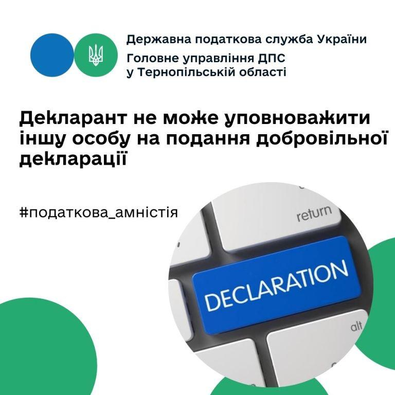 Іншу особу не можна уповноважити на подання добровільної декларації
